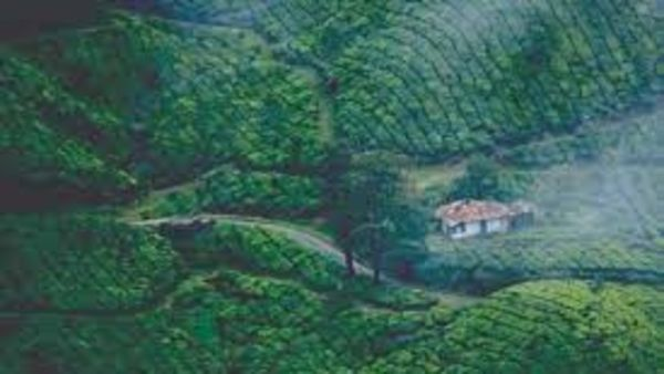 Kerala's Munnar opened for tourists on Friday