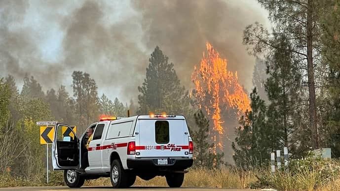 Trees burn while a Cal Fire Captain works near the intersection of Whispering Pines Lane and Centennial Drive, on 25 August in Grass Valley, California. The main threats to tree species around the world are forest clearance and other forms of habitat loss.
