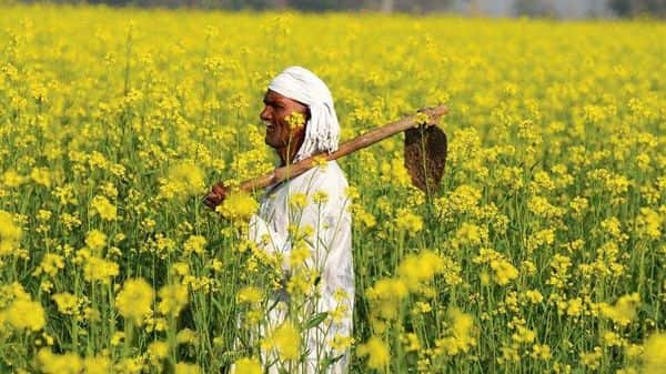 A strategy to achieve self-sufficiency based on palm excludes existing small and marginal oilseed growers in India. Moreover, it reduces the responsiveness of farmers to changing market demand.