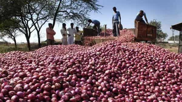 Onion is grown in three seasons—kharif, late kharif and rabi—to meet the high demand for the tuber in India throughout the year. On average, India consumes an estimated 13 lakh tonne of onion every month. (Mint)