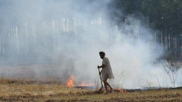Delhi faces high levels of air pollution with onset of winters, the season coinciding with paddy straw (Parali) burning in the fields in Punjab, Haryana and Uttar Pradesh (HT_PRINT)