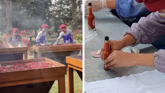 Processing the chilli sauce. Roots Agro takes pride in small batch condiments such as Hot Bamboo Shoot pickle, and Naga Mircha hot sauce made with the GI-tagged King Chilli of Nagaland.