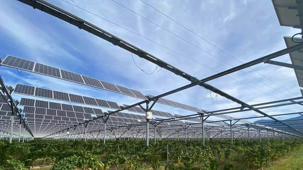 India has 100 gigawatt (GW) of installed solar and wind capacity, with another 63GW under construction. (Photo: Reuters)