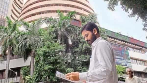 This multibagger stock has risen from  ₹361.60 to  ₹588 per share levels — logging around 65 per cent surge in one year. (Mint)