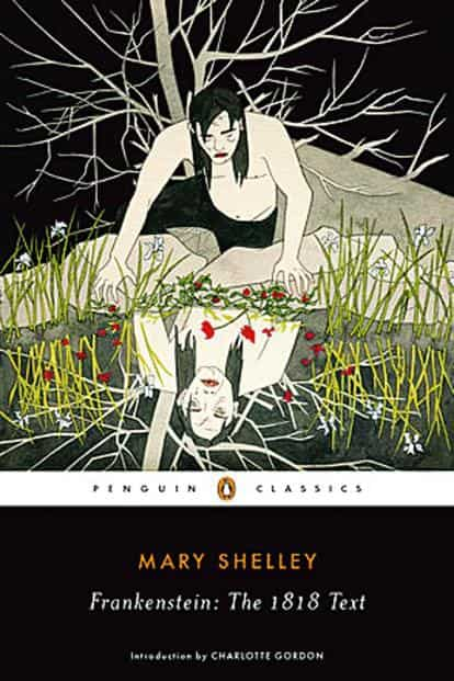 Image result for frankenstein cover