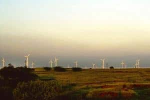 Green tech: A file photo of Suzlon Energy's wind turbines in Maharashtra. The report favours a peaceful switch to a low-carbon economy. Santosh Verma / Bloomberg