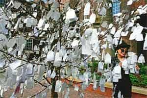 Activist artist: Ono with her famous installation Wish Tree.(Christopher Furlong,Getty Images)