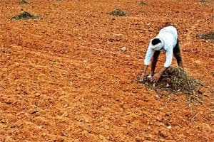 Dry patch: A farmer at Somanahally village in Kanakpura. Fields ploughed as long as two months back have been left unsowed in the region due to lack of rain. Jagadeesh NV