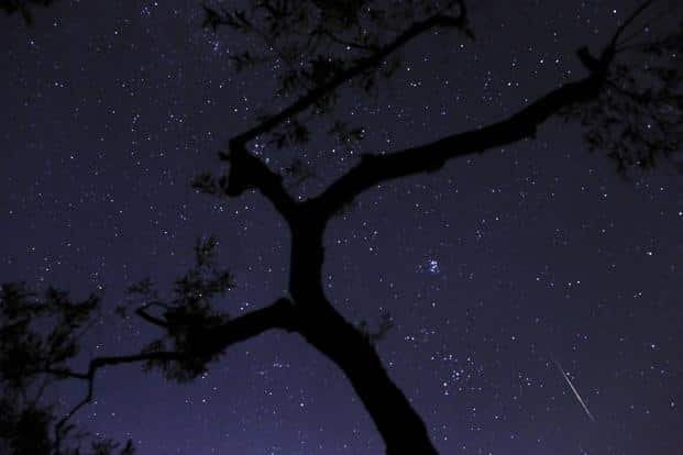 A meteor sparks while entering the earth's atmosphere behind an olive tree during the Perseids Meteor Shower in Fanos village of central Greece. AP