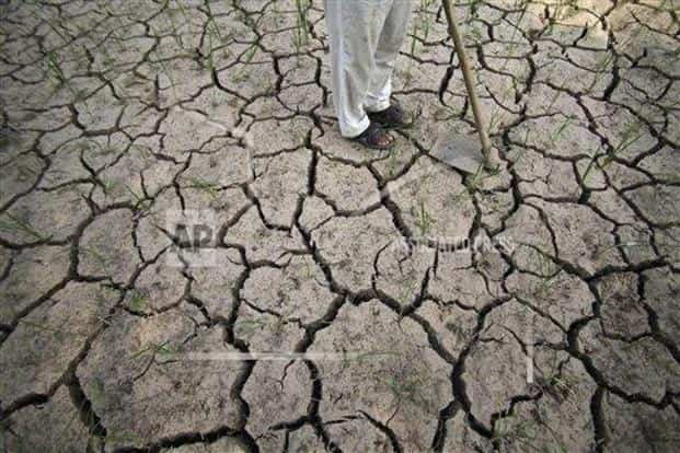There was a rainfall deficit of 12% in the monsoon season in India as a whole, and 30% of the country's area recorded deficient rainfall. Photo: AP