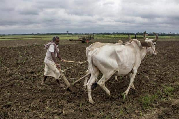 The govt is unlikely to table the land bill in this session as consensus on it is missing, and it is already facing opposition from farmers over the bill that projects it as anti-poor. If it does take up the bill, it is bound to create major ruckus on the floor. Bloomberg