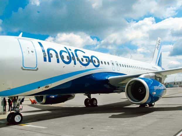 Indigo ipo research report