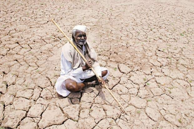 The state's disastrous winter harvest comes at a time when an unusually dry and warm winter has not only affected planting, but also raised fears of another failed crop, especially in parched states. Photo: Hemant Mishra/Mint