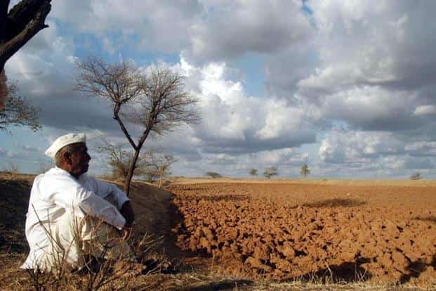 Nearly 35% of Maharashtra—roughly 15,000 villages—are in the grip of a severe drought. Photo: PTI