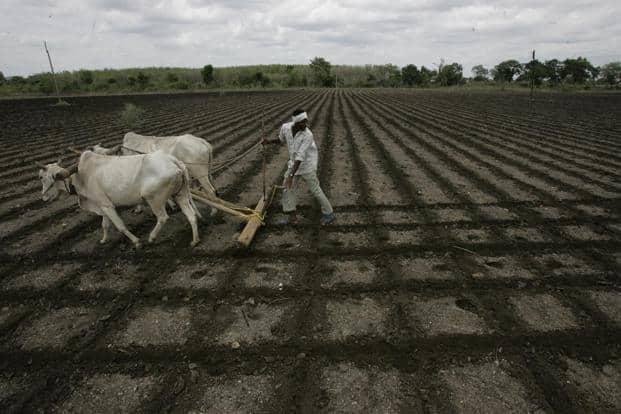 Photo: Rajanish Kakade/Hindustan Times