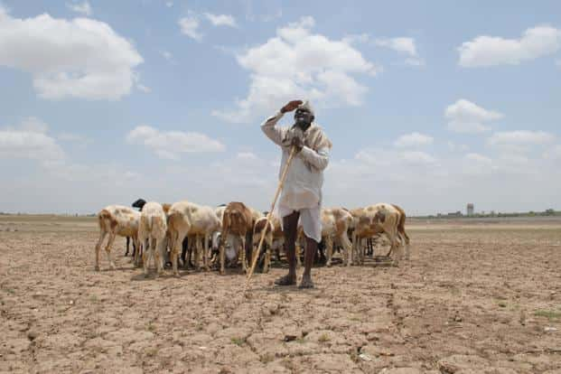 The Supreme Court asked the centre to release adequate funds under NREGA for drought-stricken states and also release delayed payment to farmers under the scheme. Photo: Hemant Mishra/ Mint