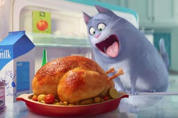 A still from the 'The Secret Life of Pets'