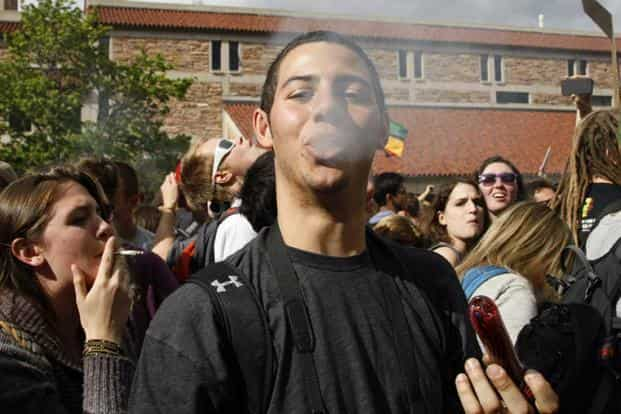 Marijuana is one of the most abused drugs in the world. Photo: Reuters