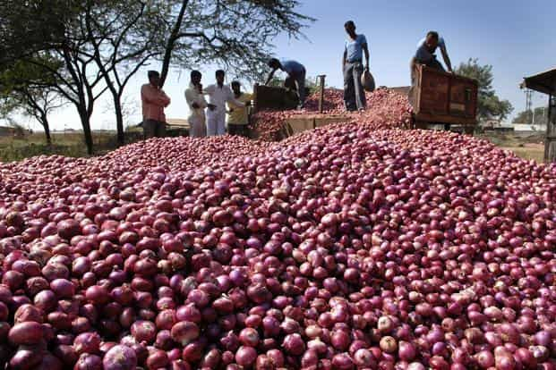 The cash crunch is forcing small farmers to postpone the transplantation of onions, as they do not have money to pay labourers. Photo: Abhijit Bhatlekar/Mint
