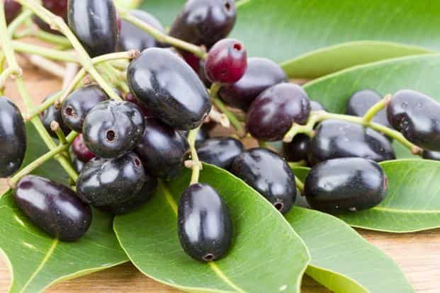 Researchers extracted dyes from jamun using ethanol. They also used fresh plums and black currant, along with mixed berry juices which contain pigments that give characteristic colour to jamun. Photo: iStock