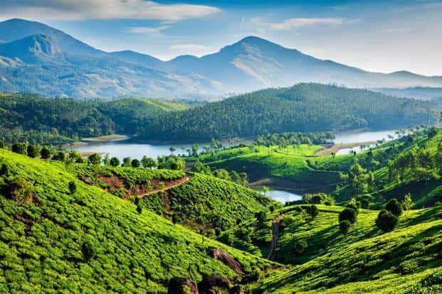 The remote sensing data also shows a massive increase in areas under plantations, agriculture and urban settlements while substantial reduction in open areas in Munnar. Photo: iStockphoto