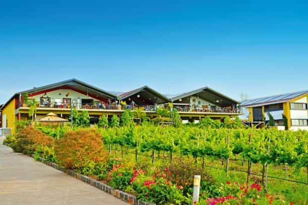 The winery at Sula Vineyards in Nashik. Photo: Courtesy Sula Vineyards
