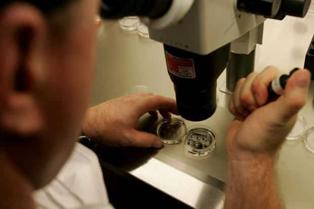 File photo. Researchers found that the artificial intelligence technique was much more consistent than human embryologists. Photo: AFP