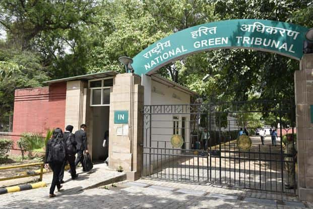 The NGT's order came on a 2016 plea that had sought immediate directions to control massive forest fires in Uttarakhand and Himachal that damage hundreds of hectares of forests. Photo: HT