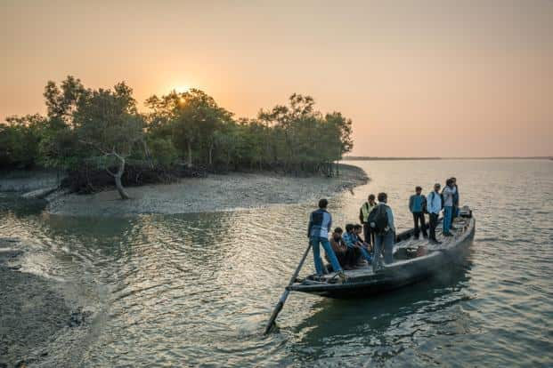 Locals travel home on one of the many small wooden boats that navigate the waterways of Sundarbans National Park. Photographs by Alamy
