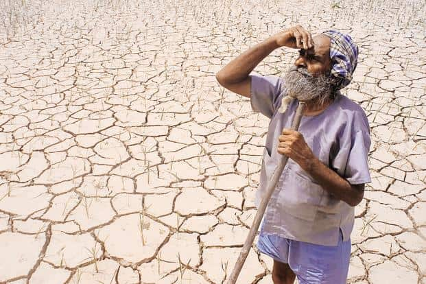 Between 1 January and 15 August this year, 580 farmers from Marathwada region committed suicide with the Beed district alone reporting 115 suicides, informed Maharashtra revenue minister Chandrakant Patil. File photo: Reuters