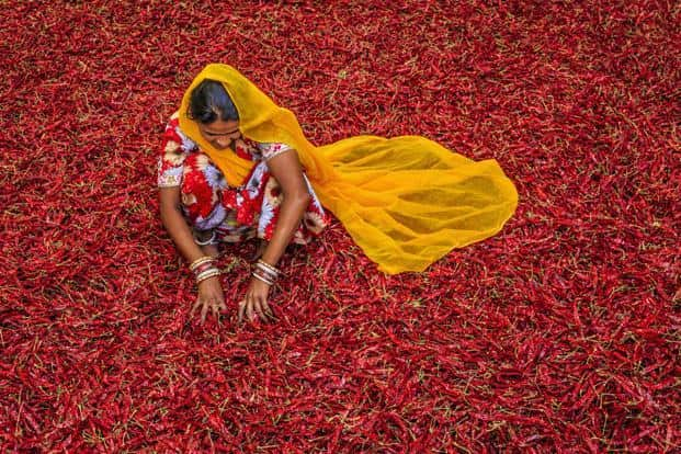 Red hot chilli pepper: Beat the chills with some of the country's