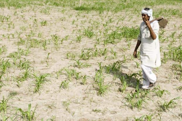 The four years of drought in Karnataka saw farmer distress reach new highs with debts, loan defaults and increase in farmer suicides. Photo: Mint