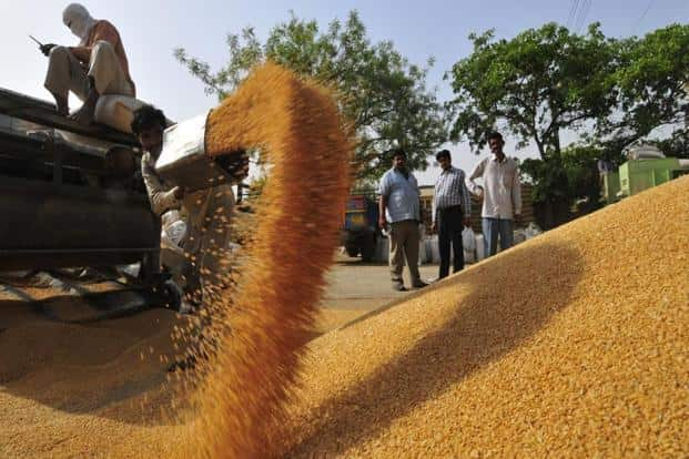 The report forecasts that prices of key commodities are likely to remain flat or around the lower ranges due to higher stock to use ratios of most commodities. Photo: Mint