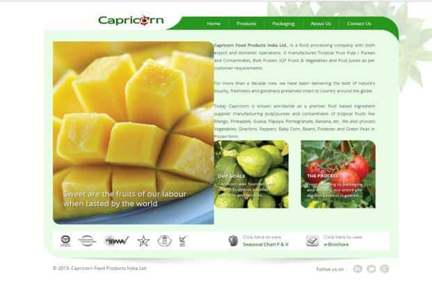 Capricorn Food files for IPO to raise Rs500 crore