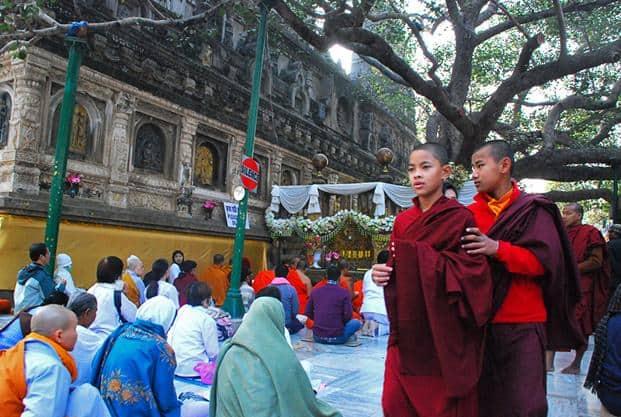 The Bodhi tree at the Maha Bodhi temple in Bodh Gaya, Bihar. Photo: Sampath Menon