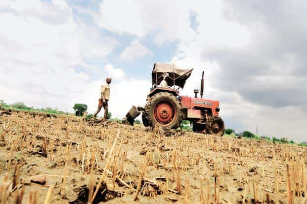 The agriculture sector needs huge investment to transform and become more attractive and remunerative. Photo: Ramesh Pathania/Mint