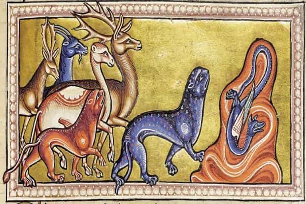 An illustration, titled 'The Panther', from the 12th century 'Aberdeen Bestiary'. Photo: Aberdeen University Library/Wikimedia Commons
