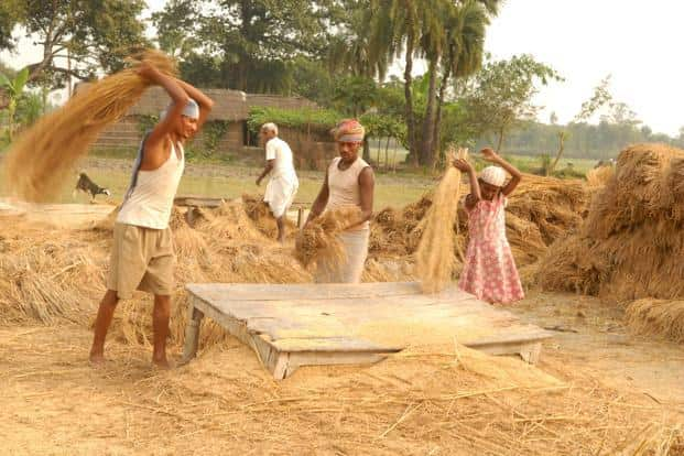 Agriculture ministry has sought data from banks for better targeting of agriculture credit. Photo: Indranil Bhoumik/Mint