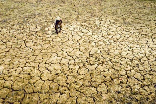 India needs policy coherence on sustainable development, climate change and environment education. Photo: PTI