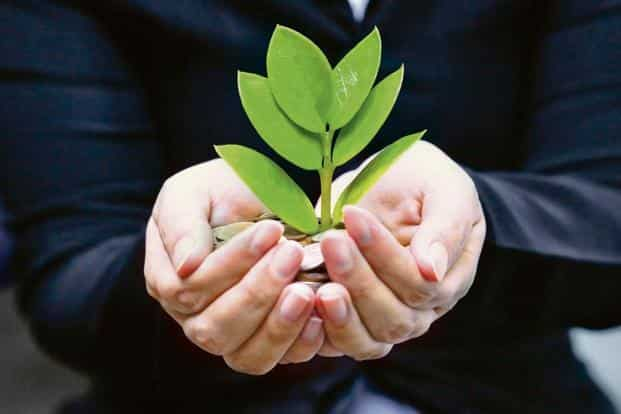 Green bonds are securities issued to fund projects that are good for the environment. Photo: iStock