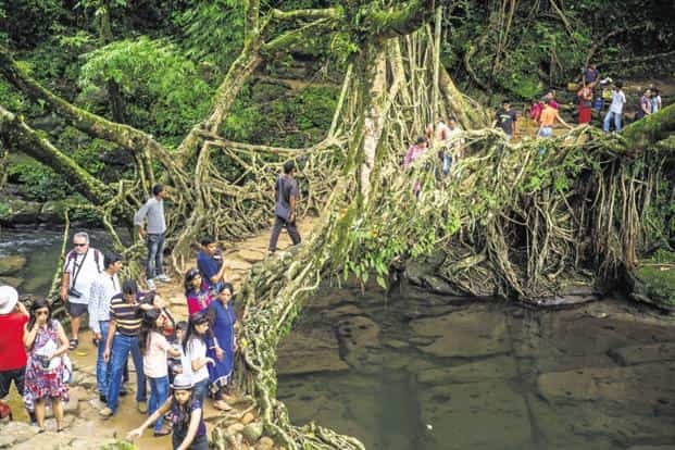 Tourists cross a bridge known as a 'living root bridge' in Mawlynnong, Meghalaya. Photo: Bloomberg