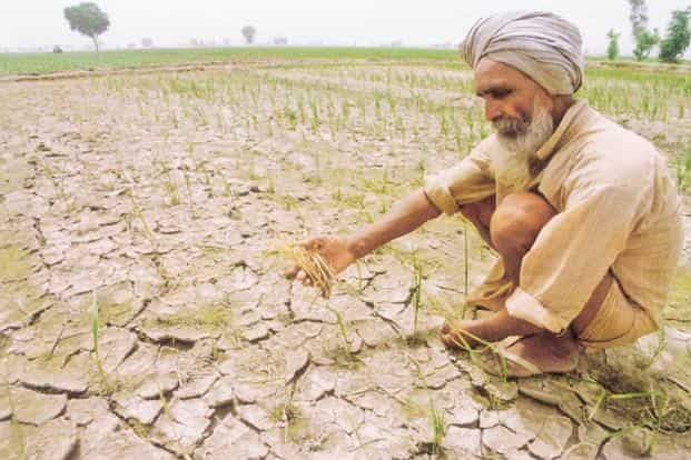 Farm loan waivers isn't the panacea they're made out to be politically. Policymakers need to realize that India has no single rural economy. Photo: PTI